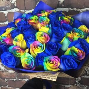 Букет 31 роза синие и радужные R667