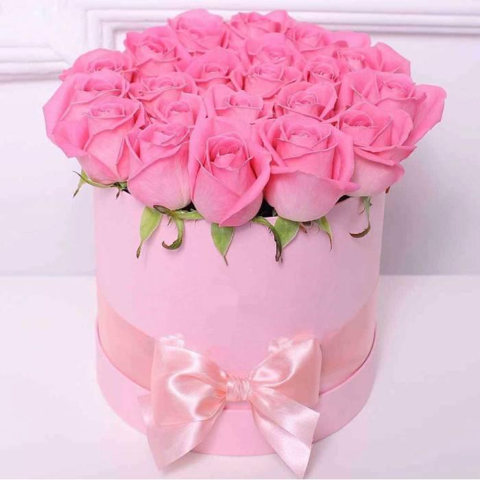 21 розовая роза в светлой коробке R033