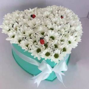 Коробка сердце 15 веток ромашковой хризантемы R1137