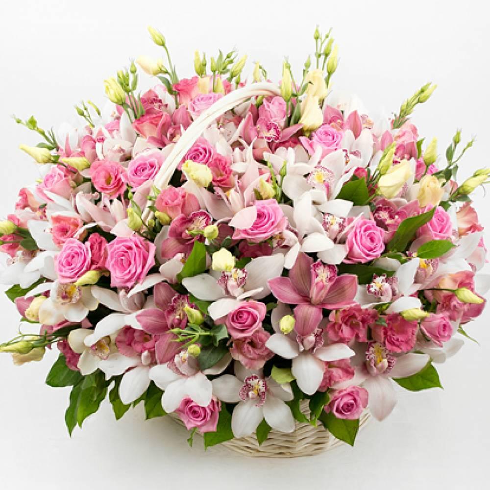 Картинки с розами и орхидеями