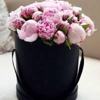 19 розовых пионов в черной коробке R009